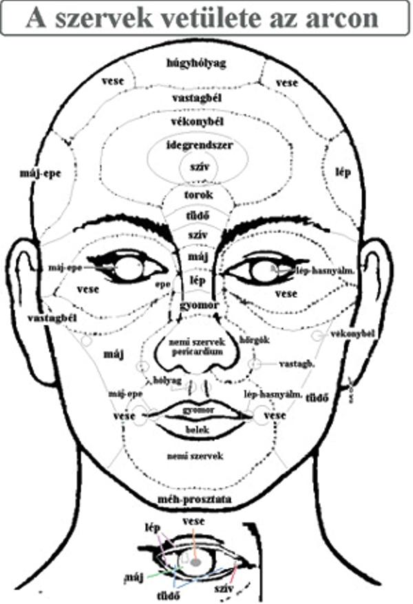 arcdiagnosztika és a fogászat