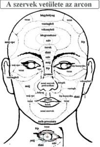 arcdiagnosztika